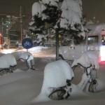 今年の札幌は雪が降るのが随分遅かったように思います