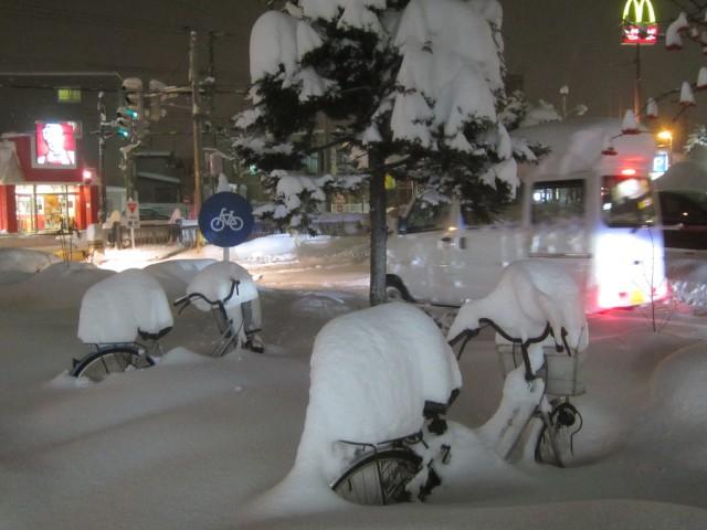 IMG 0007 640x480 - 今年の札幌は雪が降るのが随分遅かったように思います