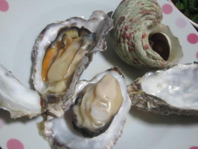 IMG 0010 - 沖縄海鮮フェアで購入したヤコウガイが美味しかった