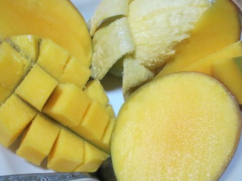 022872cb s - 北海道の春の生活23 ~南国フルーツ挑戦 / 椰子の実の切り方~