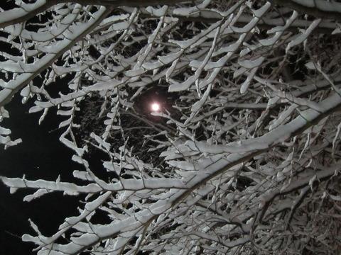 043e8a84 s - 北海道で沢山雪降ったよー