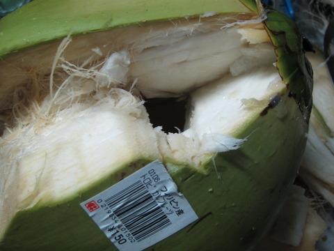 17e2bd48 s - 椰子の実をまた発見したので買ってきた