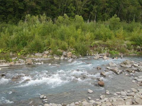 2b1955df s - 2014富良野旅行Part4 ~「日本で一番美しい道」と青い池~