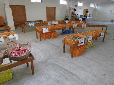 2ccf662c s - 八紘学園 ~学園産野菜 / そうめんカボチャ(金糸瓜)~