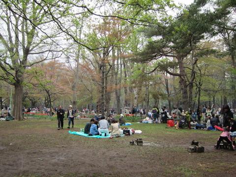 335406ae s - 北海道の春の生活25 ~桜 / 円山公園 / 花見~