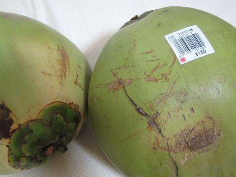 3785a9b5 s - 椰子の実とココナッツの違い / 椰子の実の分類
