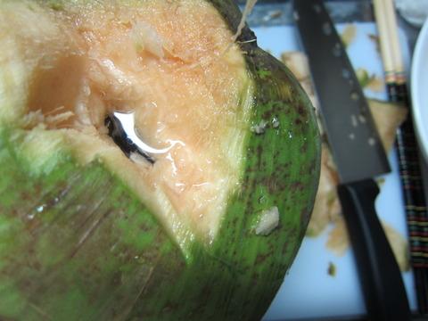3ecac76e s - 北海道の春の生活23 ~南国フルーツ挑戦 / 椰子の実の切り方~