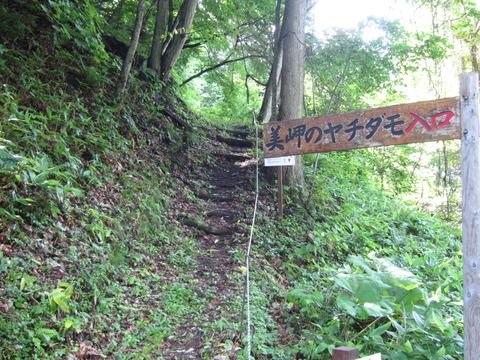 3fc2b847 s - 北海道観光 ~美岬のヤチダモ / 能取半島 / 能取岬~