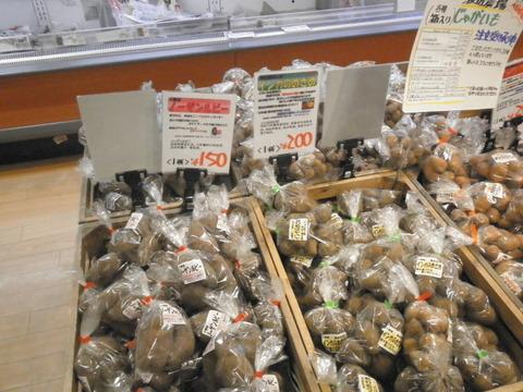 56a773b5 s - 北海道の冬の生活11 ~札幌に仕事はあるか~