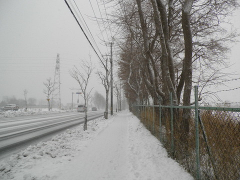 5d0a2cf4 s - 北海道の冬の生活04 ~初めての本格的な雪~