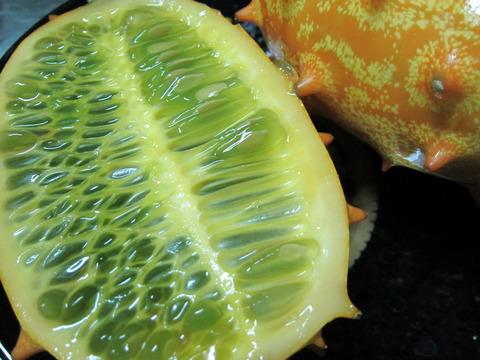 60970734 s - 北海道の春の生活23 ~南国フルーツ挑戦 / 椰子の実の切り方~