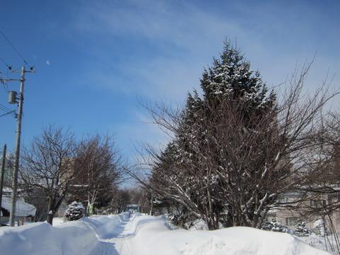 6b083143 s - 2013年 さっぽろ雪祭りPart1 ~初日の天気気温、他大雪像紹介~