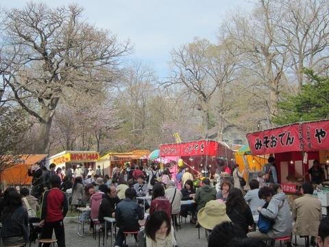 7371f58f s - 円山公園の花見2013