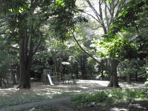 765a2698 s - 札幌観光 ~円山公園/円山登山~