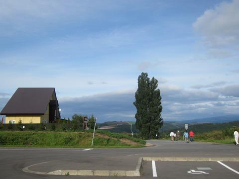 8100ada2 s - 2014富良野旅行Part5 ~パッチワークの丘の木~