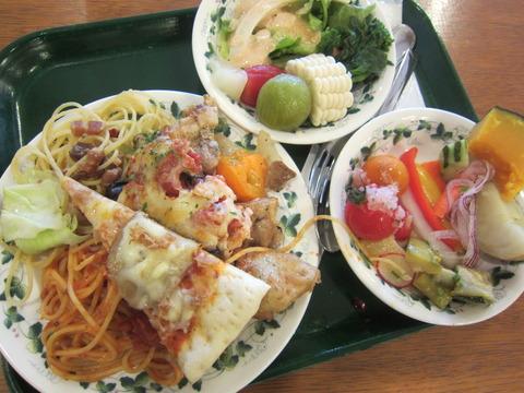 84ed0ddf s - 北海道観光ゆにガーデンPart2 ~地元野菜のバイキング~