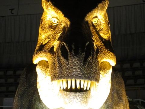 8597bf52 s - 北翔クロテック月寒ドーム ~黄河大恐竜展~