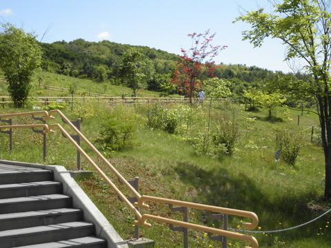 a2fb1329 s - 旭山動物園観光 ~層雲峡への道すがら~