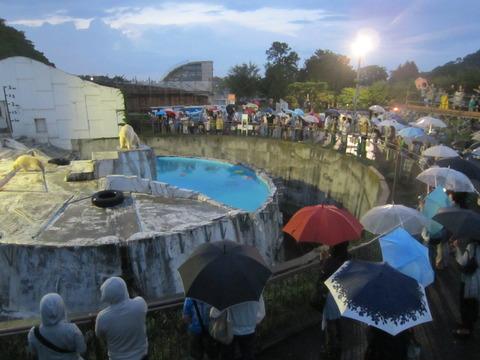 a99ff2da s - 円山動物園 / 夜の動物園