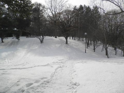 ab73bb7c s - 札幌市内観光 ~月寒公園~