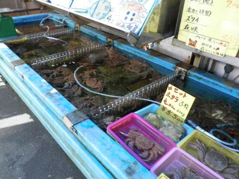 b93fdb39 s - 札幌市内観光 場外市場 佐藤水産