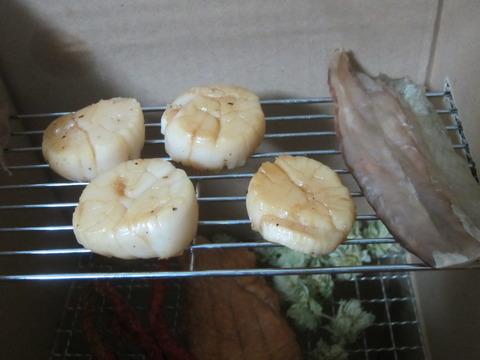 be9ba112 s - 魚介類を干してみたホタテ編Ver2 / 火を通してからの乾燥