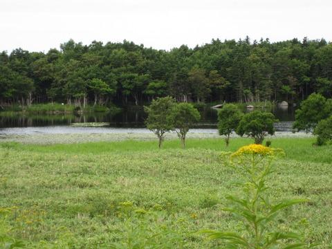 c4e33d2c s - 北海道観光 ~世界遺産知床半島 / 知床五湖~