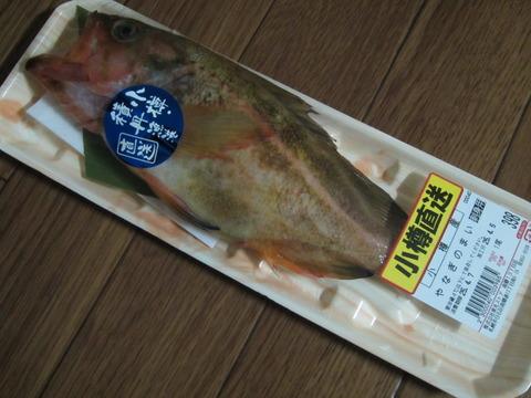 cf5abd32 s - つぼ鯛 / 生ほっけ / 柳の舞