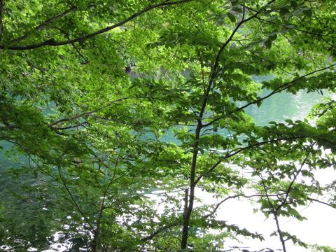 df0ad521 s - 北海道観光 ~屈斜路湖 / 和琴半島 / 和琴温泉~