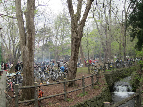 e4b91bf3 s - 北海道の春の生活25 ~桜 / 円山公園 / 花見~