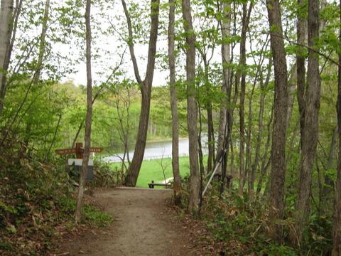 e544d631 s - 札幌市内観光 ~野幌森林公園 瑞穂池~
