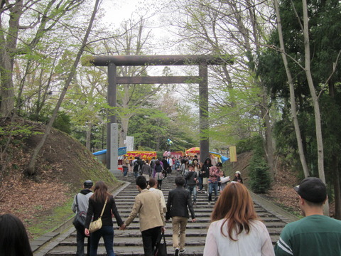 f0e22758 s - 北海道の春の生活25 ~桜 / 円山公園 / 花見~