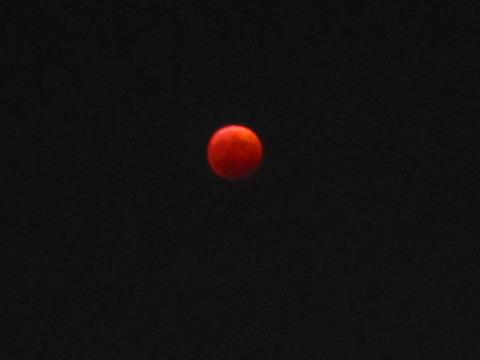 f31c5ae1 s - 北大の敷地で月食を見てきた