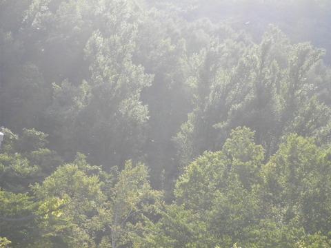 f98c32d1 s - 札幌市内観光 ~旭山記念公園~