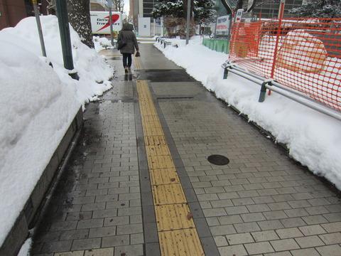 ff77195e s - 北海道の道ってツルツル滑る?